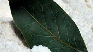 Излекувайте диабета и безсънието с дафинов лист!