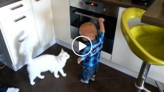 Бебето тръгна да отваря пусната печка! Вижте как реагира Котката!