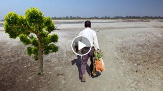 Този Мъж сади всеки ден по- едно дърво! Вижте какво е направил за 40 години!
