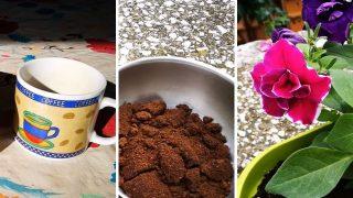 Разберете защо един Градинар използва Утайка от кафе