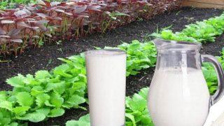 Ето как се използа Прясно Мляко в Градината